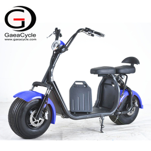 Removable Battery 18*9.5 Fat Tire Electric Scooter