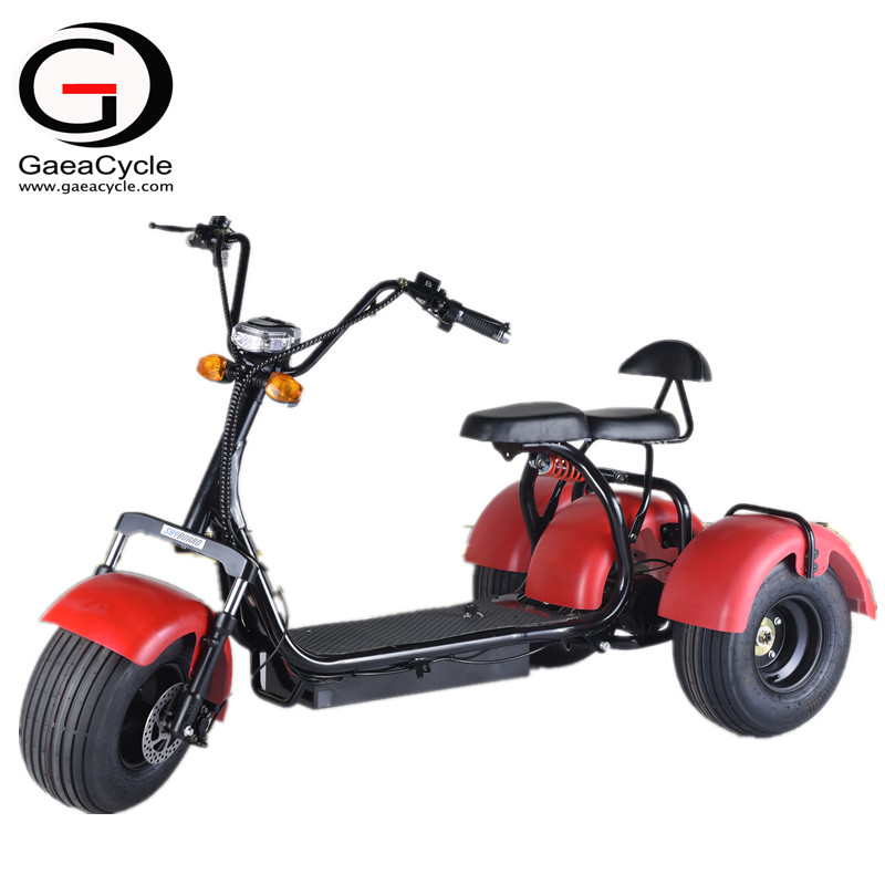 1000W/1500W Double Battery Citycoco 3 Wheel Electric Scooter