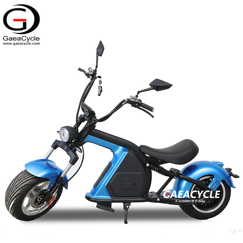 EEC COC Electric Fat Tire Scooter 2000W with Removable Battery Long Range 12inch Wheel Citycoco with Seat From China