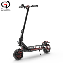 Dual 800W Motor Electric kick Scooter High Powerful Offroad 2 Wheel E-scooter for Adults