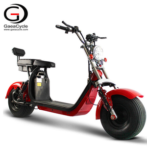 Hot Sale EEC/COC Approval Fat Tire Electric Scooter Citycoco