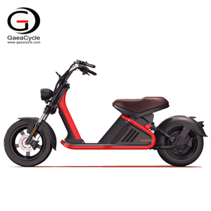 Newest EEC COC Approval Large Removable Battery Electric Scooter Citycoco Electric Motorcycle